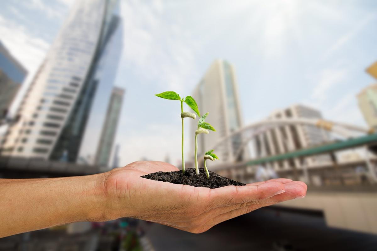 Kestävä kehitys ohjaa Tikkurilan tuotekehitystä